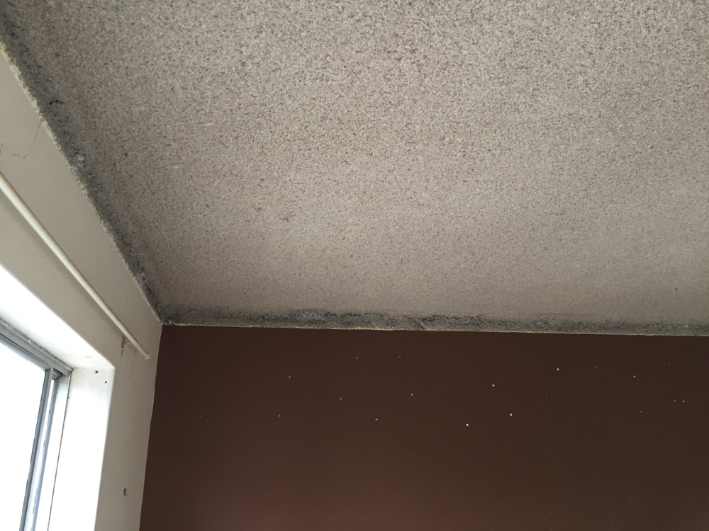 Before Amp Afters Vermiculite Ceiling