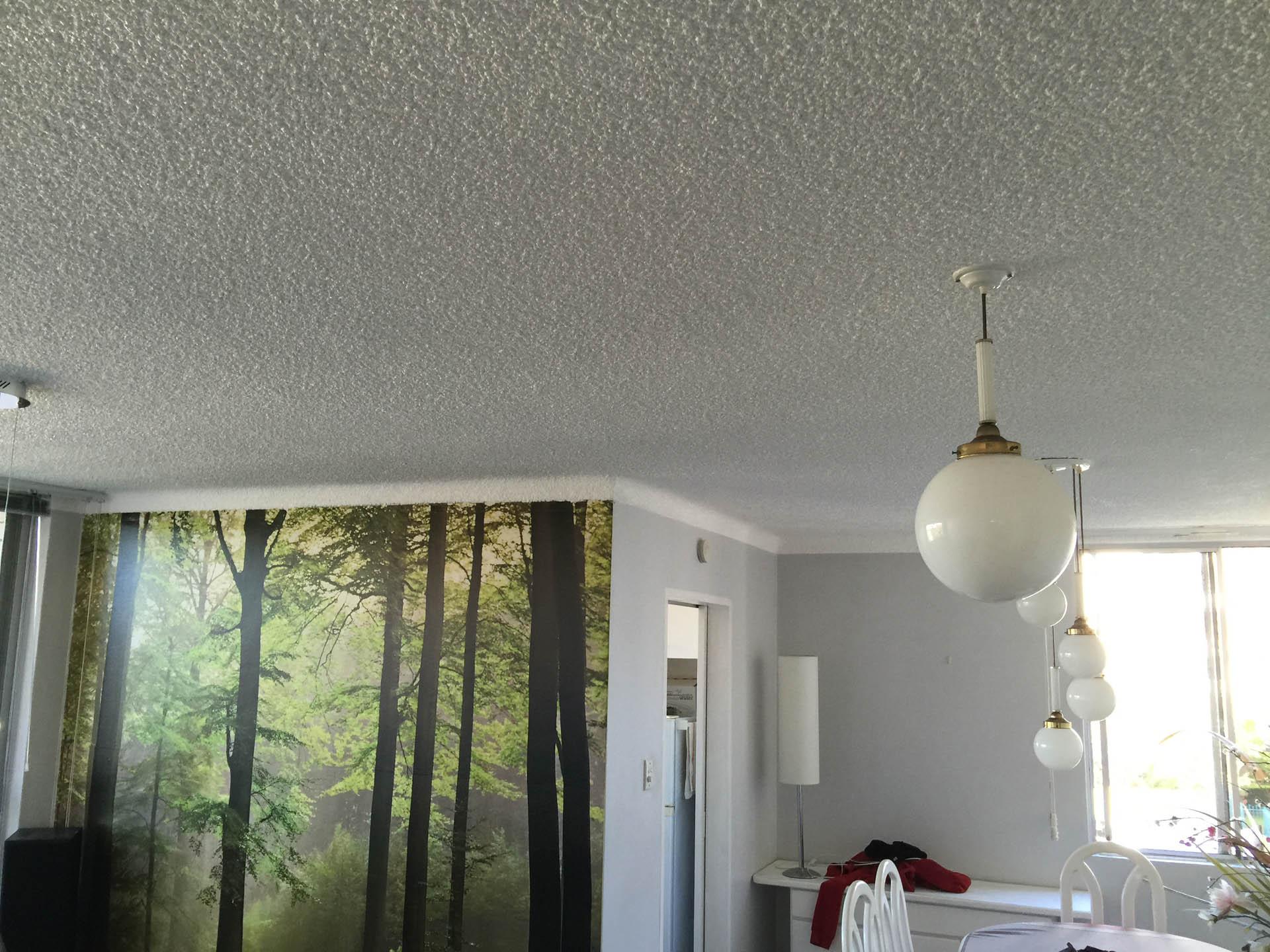 Vermiculite Ceiling Painter Sydney